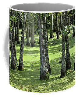 Coffee Mug featuring the photograph Kentucky Swamp by Kathy Kelly