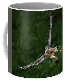 Kestrel With Prey Coffee Mug