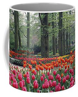 Keukenhof Garden, Lisse, The Netherlands Coffee Mug