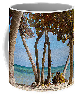 Key West Afternoon Coffee Mug