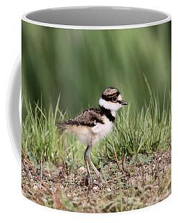 Killdeer - 24 Hours Old Coffee Mug