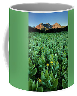 Kilpacker Basin Coffee Mug