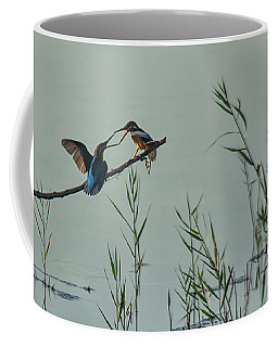 King Fishers  Coffee Mug
