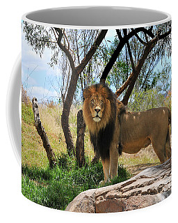 Coffee Mug featuring the photograph King Of His Domain by Howard Bagley