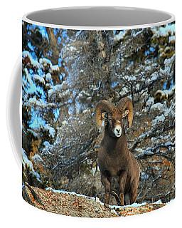 King Of The Canadian Rockies Coffee Mug