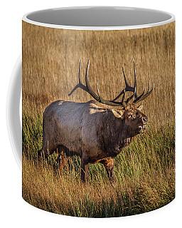 King Of The Hill Coffee Mug