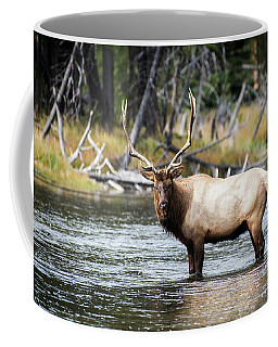 King Of The River Coffee Mug