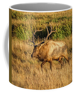King Of The Valley Coffee Mug