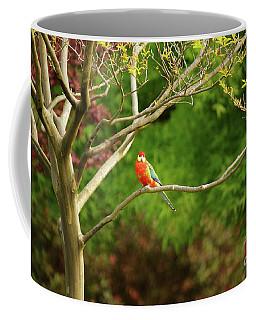 King Parrot Coffee Mug by Cassandra Buckley