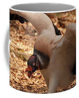 Coffee Mug featuring the photograph King Vulture 1 by Chris Flees