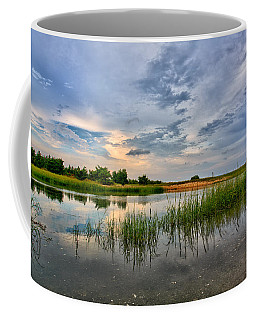 Kings Park Bluffs Coffee Mug