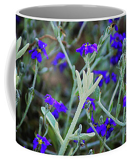 Coffee Mug featuring the photograph Kings Park Vii by Cassandra Buckley
