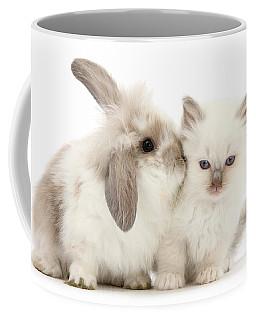 Kiss Her Fluffy Cheek Coffee Mug