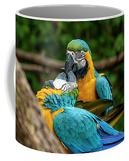 Kissing Parots Coffee Mug