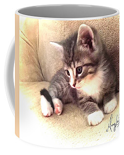 Kitten Deep In Thought Coffee Mug