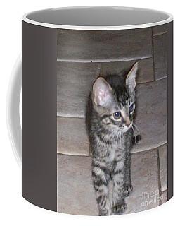 Martius Kitten Coffee Mug