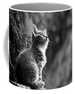 Kitten In The Tree Coffee Mug