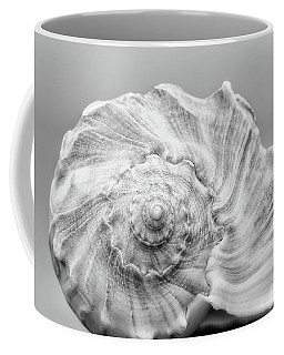 Coffee Mug featuring the photograph Knobbed Whelk by Benanne Stiens