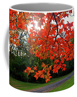 Knox Park 8444 Coffee Mug