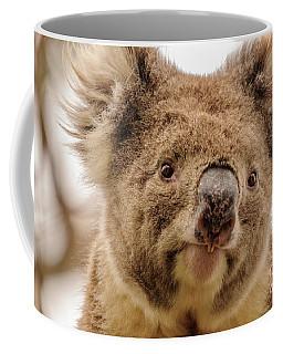 Koala 4 Coffee Mug by Werner Padarin