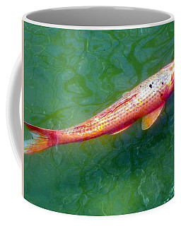 Coffee Mug featuring the photograph Koi Fish by Joseph Frank Baraba
