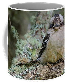Kookaburra 3 Coffee Mug