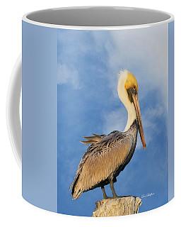 Kremer's Pelican Coffee Mug