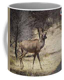 Coffee Mug featuring the photograph Kudu Crossing by Ernie Echols