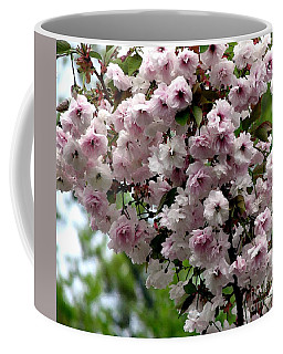 Japanese Cherry Tree Blossoms Highland Park Rochester Ny Watercolor Effect Coffee Mug