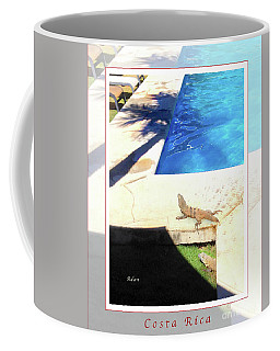 la Casita Playa Hermosa Puntarenas Costa Rica - Iguanas Poolside Greeting Card Poster Coffee Mug