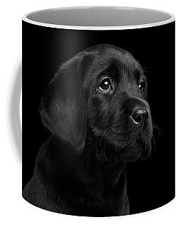 Coffee Mug featuring the photograph Labrador Retriever Puppy Isolated On Black Background by Sergey Taran