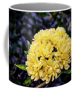 Ladies Club Coffee Mug