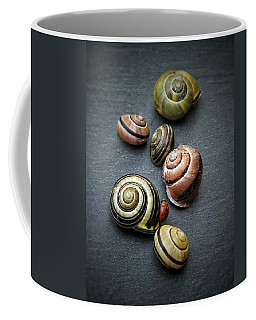 Lady Bug And Snail Shells 1 Coffee Mug by Karen Stahlros