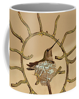 Lady Hummingbird On Her Nest Coffee Mug