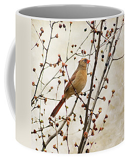 Cardinal Art Female Coffee Mug