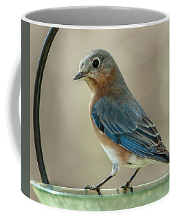 Coffee Mug featuring the photograph Ladybluebird Of Happiness by Jim Moore
