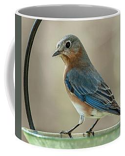 Ladybluebird Of Happiness Coffee Mug