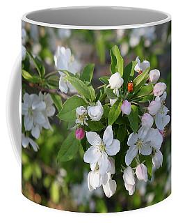Ladybug On Cherry Blossoms Coffee Mug