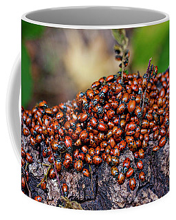 Ladybugs On Branch Coffee Mug
