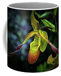 Coffee Mug featuring the photograph Lady's Slipper by Richard Goldman