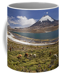 Lago Chungara And Volcan Parinacota Coffee Mug