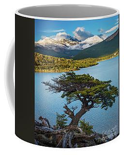 Laguna Capri Tree Coffee Mug