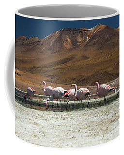 Laguna Colorada, Andes, Bolivia Coffee Mug