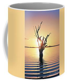 Coffee Mug featuring the photograph Lake Bonney Sunset by Ray Warren