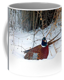 Coffee Mug featuring the photograph Lake Country Pheasant 2 by Will Borden