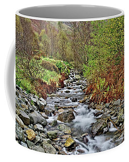 Lake District Autumn Stream Coffee Mug