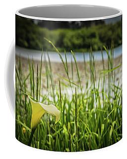 Lake Lily Coffee Mug