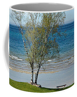 Coffee Mug featuring the photograph Lake Michigan Birch Tree Bench by LeeAnn McLaneGoetz McLaneGoetzStudioLLCcom