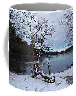 Coffee Mug featuring the photograph Lake Padden Blue by Karen Molenaar Terrell