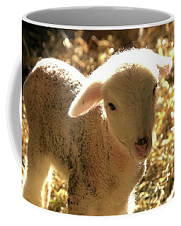 Lamb All Aglow Coffee Mug